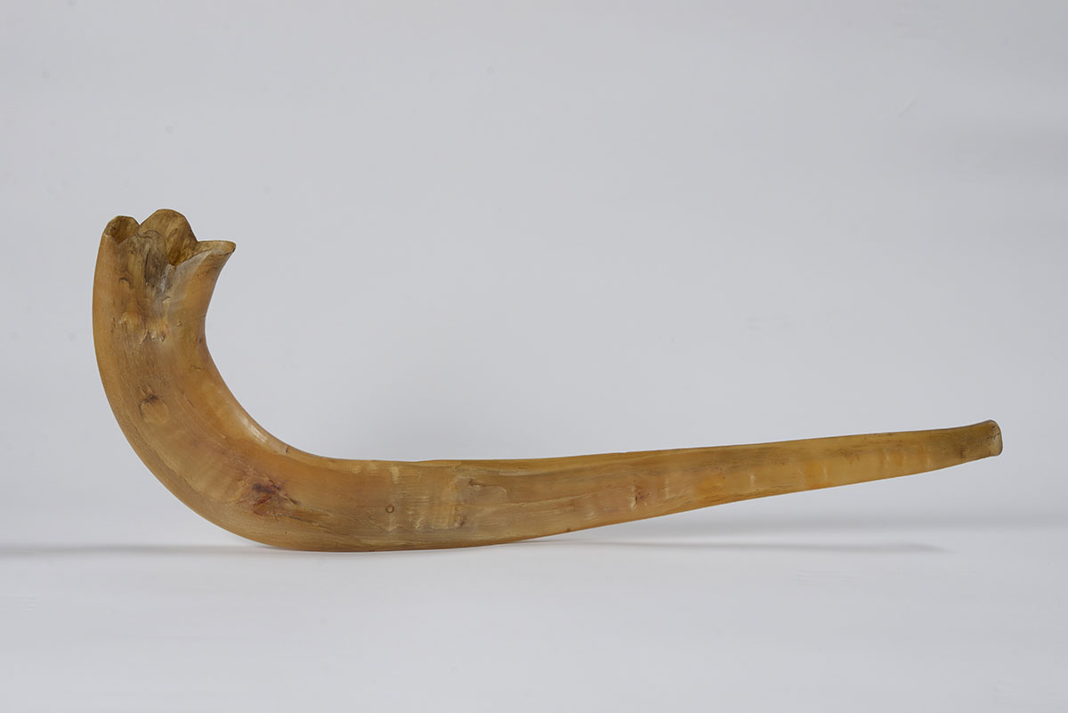 Shofar (Ram's Horn) made under perilous conditions in the Skarzysko-Kamienna forced labor camp in Poland in 1943