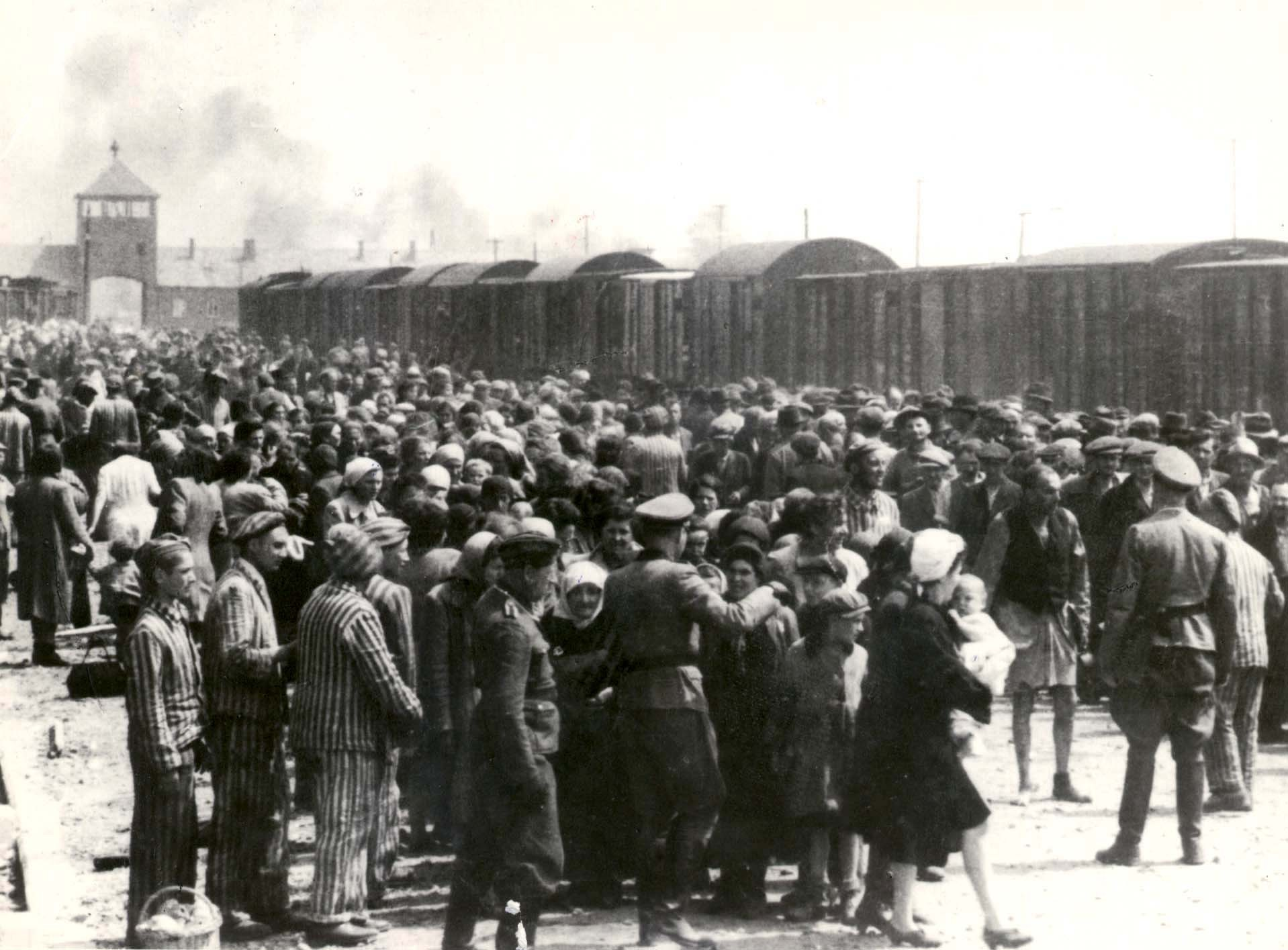 Auschwitz-Birkenau, Poland, A selection on the platform