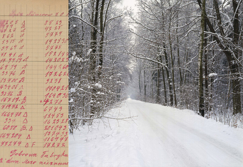 And These are Their Names... - Identifying the Death March Victims Buried in a Mass Grave in Poland