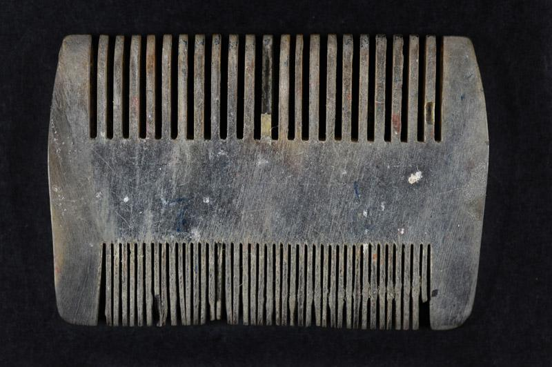 The comb that Janka Breznitz traded in Auschwitz in exchange for a full day's ration of bread