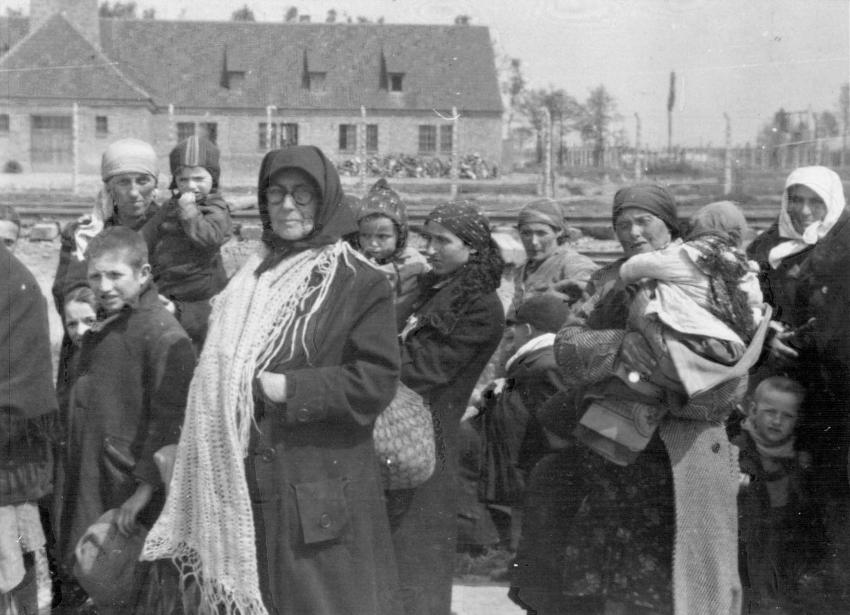 "Auschwitz-Birkenau, Poland, Jewish women and children deemed ""unfit for work"" being unknowingly led to Gas Chamber #3."