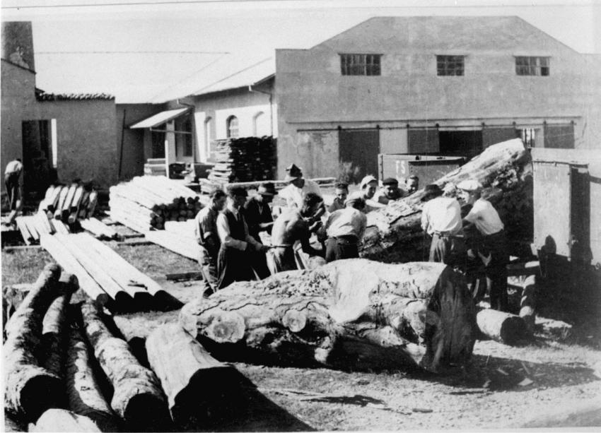 Jews in forced labor in Gorizia in the Italian-occupied territories, September 1942