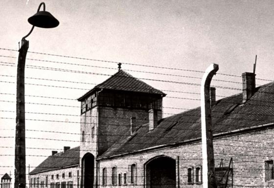 Auschwitz: History of a Death Camp
