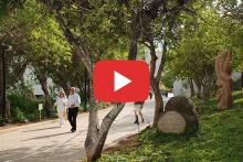 Virtual Tour of Avenue of The Righteous Among the Nations