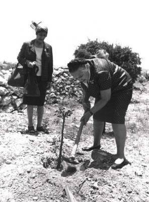 Magda Trocmé plants a tree in her and her husband's honor, Yad Vashem