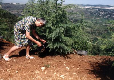 Grüninger's daughter plants a tree in the Avenue of the Righteous, Yad Vashem