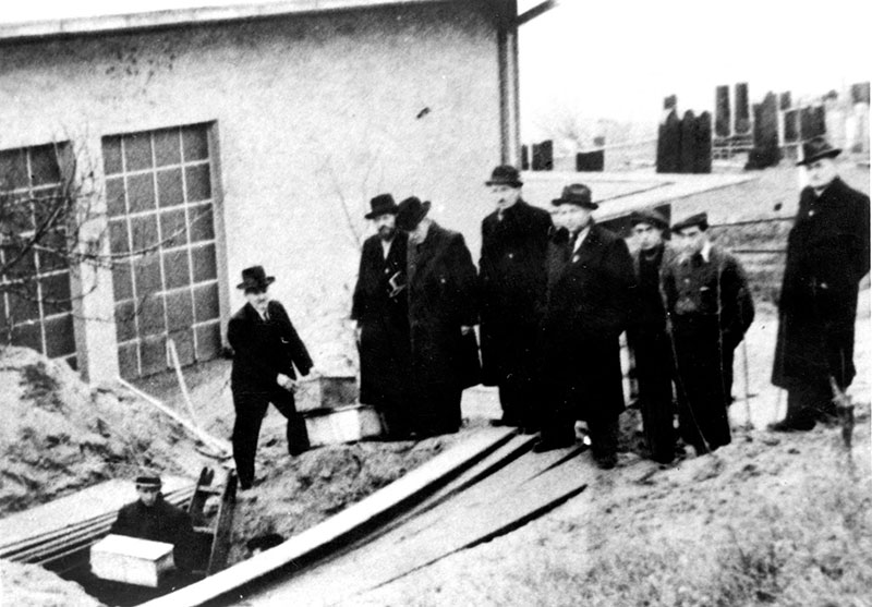 Holocaust study in germany