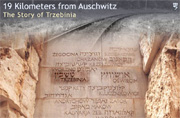 19 km from Auschwitz: The Story of Trzebinia