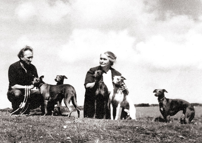 Sofka with her dogs. Bodmin Moor, 1967